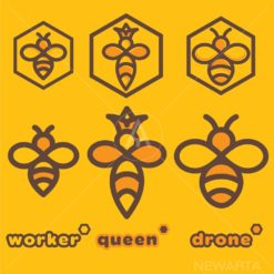 bee logo set of a bee worker bee queen and bee drone