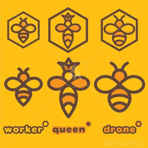 bee logo set of a bee worker bee queen and bee drone