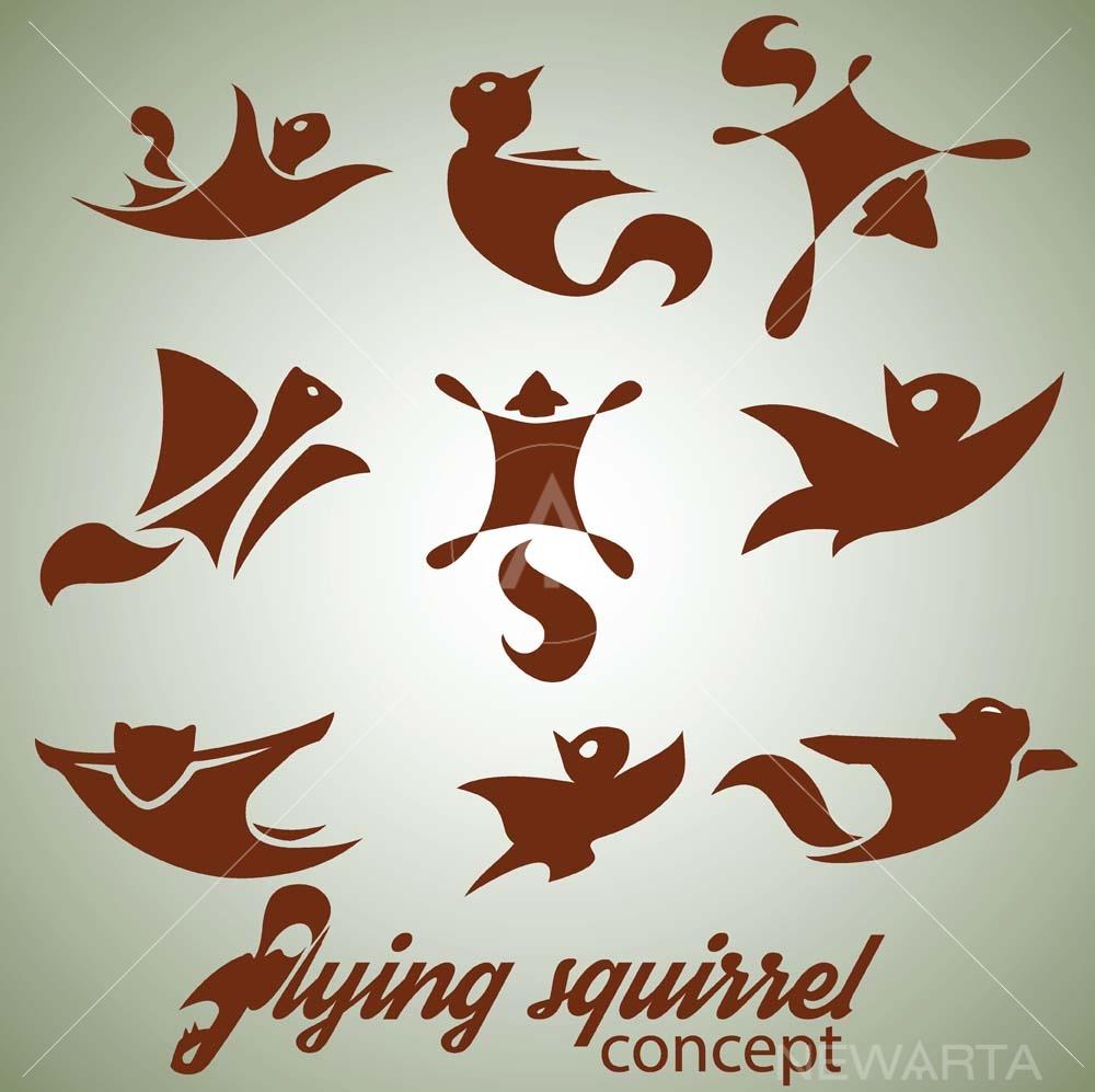 Flying Squirrel Design Concept Set