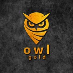 Gold Engraved Logo Mock