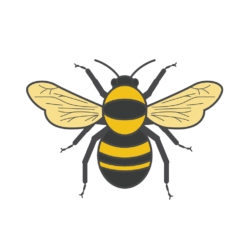 bumblebee logo graphic design icon vector