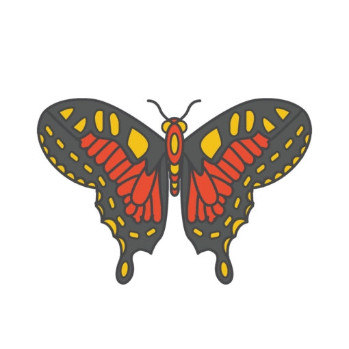 butterfly logo graphic design icon vector