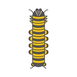 caterpillar logo graphic design icon vector