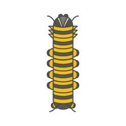 caterpillar logo graphic design icon vector