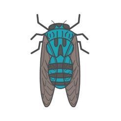 cicada logo graphic design icon vector