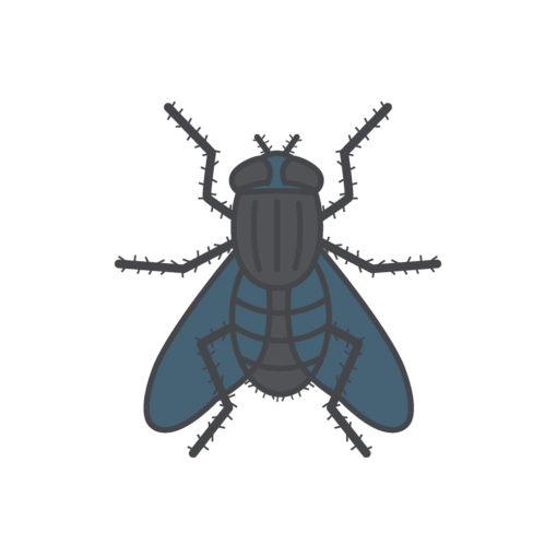 fly logo graphic design icon vector
