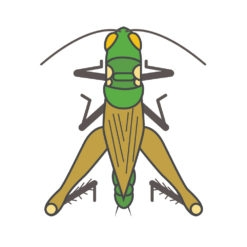 grasshopper logo graphic design icon vector