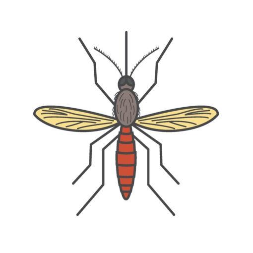 musquito logo graphic design icon vector
