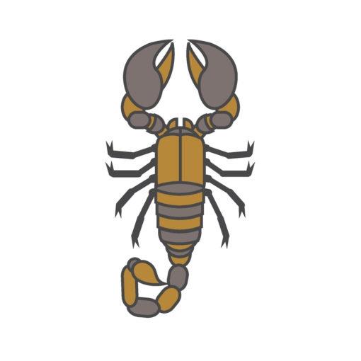 scorpion logo graphic design icon vector