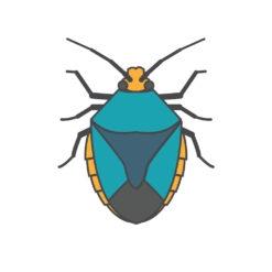 shield bug logo graphic design icon vector