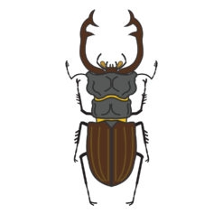 stag beetle logo graphic design icon vector