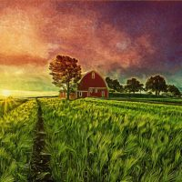 agriculture field painting