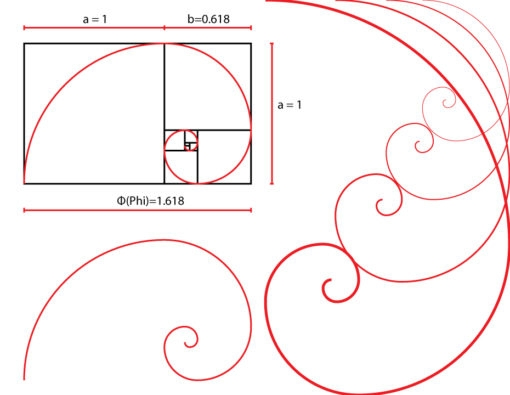 golden ratio spiral vector graphic tool free